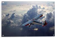 Luscombe Flight, Acrylic Print