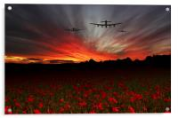 A Poppy Field Dream , Acrylic Print