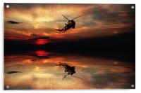 Sea King Sunset , Acrylic Print
