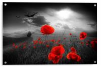 Royal Air Force Tribute - Selective, Acrylic Print