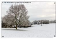 Snowy Campbell Park, Acrylic Print
