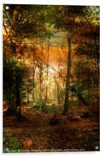 An Evening Ramble., Acrylic Print