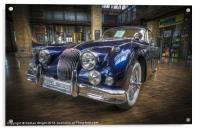 Blue Jag, Acrylic Print