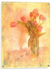 Tulip Time, Acrylic Print