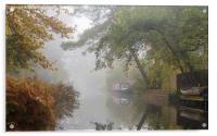 Autumn on the Basingstoke Canal, Acrylic Print