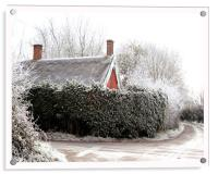 Thatched cottage after a heavy frost, Acrylic Print