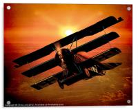 The Bloody Red Baron's Fokker at Sunset, Acrylic Print