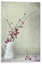 winter still life, Acrylic Print