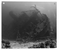 Ghiannis.D Wreck & Divers,Egypt., Acrylic Print