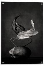 el tango, Acrylic Print