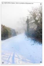 Snowy Lane, Acrylic Print