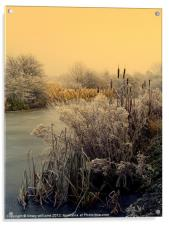 FROST, Acrylic Print