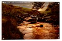 Ladybower Brook, Acrylic Print