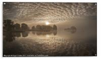 Llangorse lake dawn, Acrylic Print