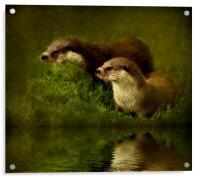 Otters Watch, Acrylic Print