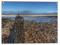 Seaweed covered groyne on Sheringham beach, Acrylic Print