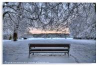 Snow, Highgate Wood, Acrylic Print