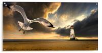 soaring inshore, Acrylic Print