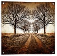 stark winter avenue, Acrylic Print