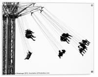 Swing!, Acrylic Print
