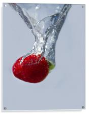 Strawberry Drop., Acrylic Print