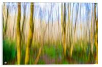 Walk In The Woods, Acrylic Print