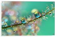 Smokey Rainbow Drops, Acrylic Print
