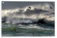 Waves on Clogher Beach, Acrylic Print