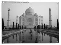 The Taj Mahal, Acrylic Print