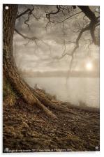 MOTE PARK SUNSET, Acrylic Print