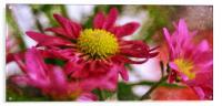 flora, Acrylic Print