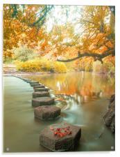 Box Hill Stepping Stones, Acrylic Print