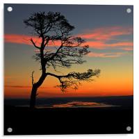 Sunrise silhouette, Acrylic Print