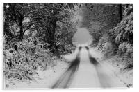 Winter Road, Acrylic Print