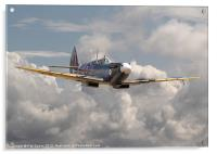 Spitfire - portrait of an icon, Acrylic Print