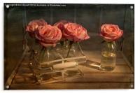 Milk Bottle Roses, Acrylic Print