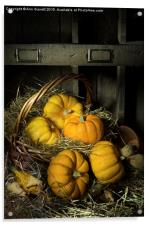 Pumpkins in a Basket 2, Acrylic Print