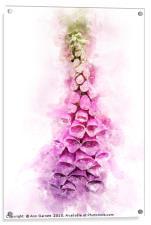Digitalis Splash, Acrylic Print