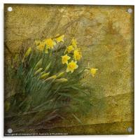 Spring Time, Acrylic Print