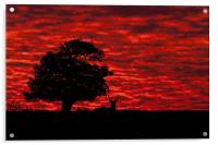 Shepherds' Warning, Acrylic Print