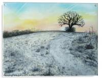 Snowy Oak, Acrylic Print