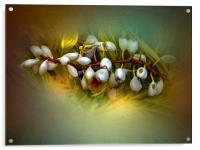 Nature Glows, Acrylic Print