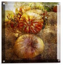 Autumn Flare, Acrylic Print
