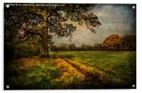 Tidmarsh Meadows in Autumn, Acrylic Print