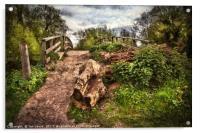 Pathway over Hissey Bridge, Acrylic Print