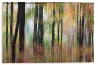 Ashton Court, Acrylic Print