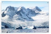 Cierva Cove Glaciers & Iceberg, Acrylic Print