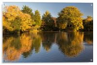 Autumn Reflections, Acrylic Print