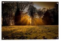 Winter rays, Acrylic Print