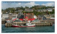 Oban Harbour, Acrylic Print